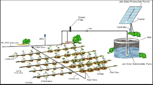 Agricultural Solar Systems Amp Desalination